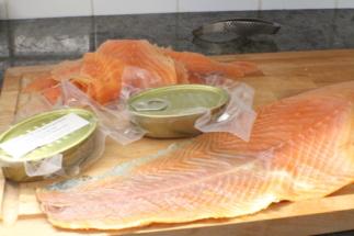 saumon rillettes